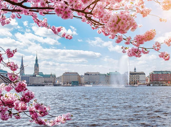 Pflegeliebling Betreuung- und Entlastungsleistungen in Hamburg